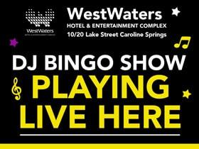 DJ-Bingo-280w