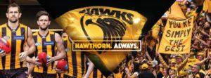 WW Hawthorn Appearances