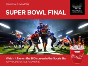 ww-superbowl-final