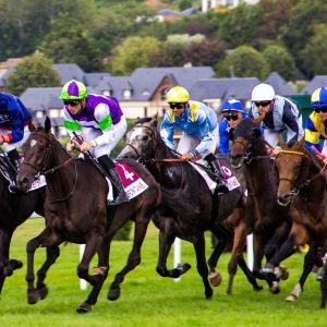 Race day Saturday horse racing punters club WestWaters